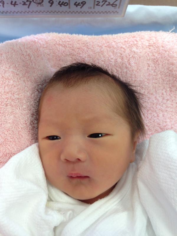 <p>長谷川ファミリーに新しい一員が加わりました。</p>