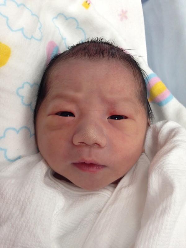 <p>町田</p> ファミリーに新しい一員が加わりました。