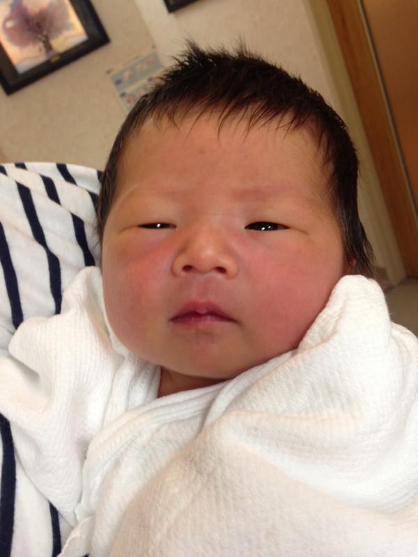 <p>松尾ファミリーに新しい一員が加わりました。</p>