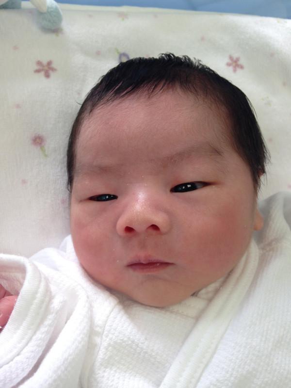 <p>小田ファミリーに新しい一員が加わりました。</p>