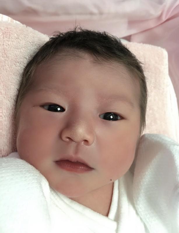 <p>江本</p> ファミリーに新しい一員が加わりました。